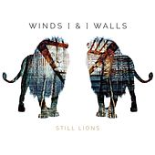Still Lions by Winds