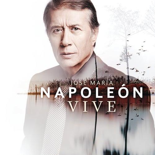Vive by José María Napoleón
