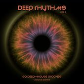 Deep Rhythms, Vol. 2 (20 Deep House Grooves) by Various Artists
