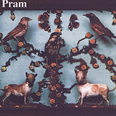 The Museum of Imaginary Animals by Pram