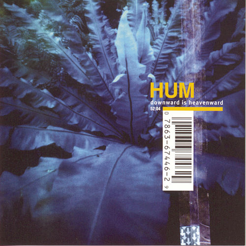 Downward Is Heavenward by Hum