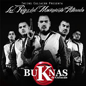 Play & Download Los Reyes del Movimiento Alterado [Explicit] by Los Buknas De Culiacan | Napster