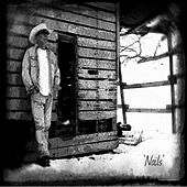 Play & Download Lost in Ransom Illinois by the Nails | Napster
