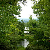 Ding by Joe