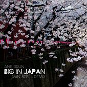 Play & Download Big in Japan (Ivan Spell Remix) by Ane Brun | Napster