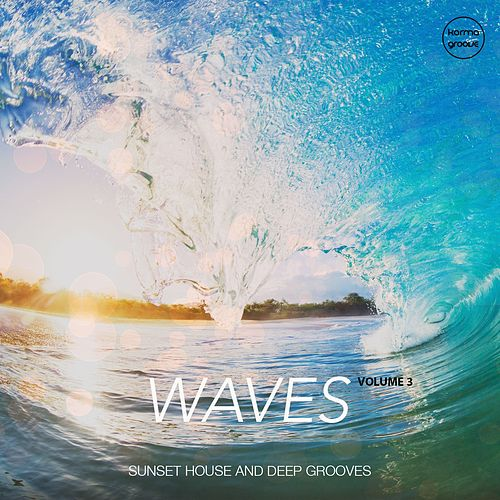 Waves, Vol. 3 by Various Artists