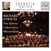Play & Download Richard Strauss: Don Quixote; Romanze; Serenade, Op. 7 by Various Artists | Napster