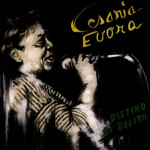 Play & Download Destino Di Belita by Cesaria Evora | Napster
