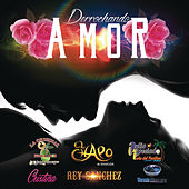 Play & Download Derrochando Amor by Various Artists | Napster