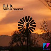Wind of Changes by The Rib