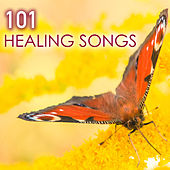 Play & Download 101 Healing Songs - Deep Sleep Music with Sounds of Nature for Relaxation, New Age Meditation Sounds to Help You Relax and Meditate, Natural Spa White Noise for Reiki, Yoga, Massage and Sleeping by Various Artists | Napster