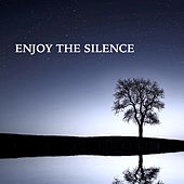 Enjoy the Silence: Calming Soothing Music for Relaxing Time of Mindfulness Meditation & Concentration by Nature Sounds Nature Music