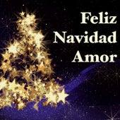 Feliz Navidad Amor - La Mejor Playlist de Navidad para Celebrar las Fiestas con tu Amor y Familia by Canciones de Navidad (Popular Songs)