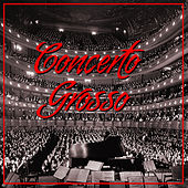 Play & Download Concerto Grosso by Camerata Academica Würzburg | Napster
