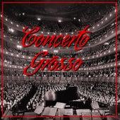 Concerto Grosso by Camerata Academica Würzburg