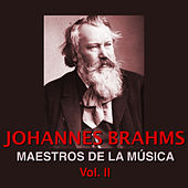 Play & Download Maestros de la Música Brahms Vol. II by Wiener Symphoniker | Napster