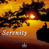 Play & Download Serenity by Fernanbirdy | Napster