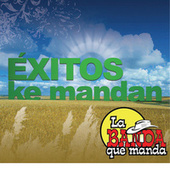 Play & Download Exitos Ke Mandan by La Banda Que Manda | Napster