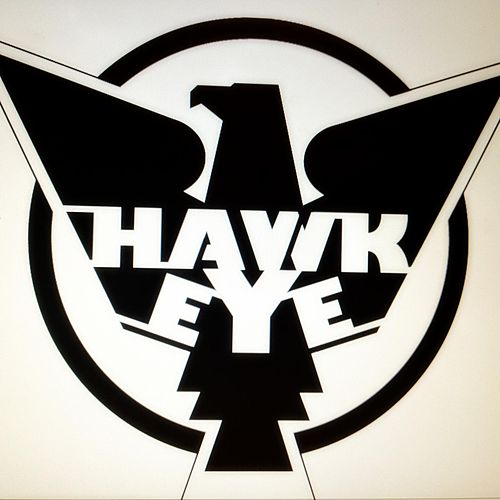Play & Download Sylvia Calling by Hawkeye | Napster