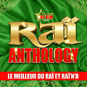 Raï Anthology by DJ Kim: Le Meilleur du Raï et Raï'n'B by Various Artists