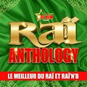 Raï Anthology by DJ Kim: Le Meilleur du Raï et Raï'n'B von Various Artists