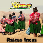 Raíces Incas by Various Artists