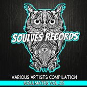 Play & Download Soulmates, Vol. 25 - Single by Various Artists | Napster
