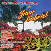 Play & Download Las Bellas Canciones De Juan Gabriel by Various Artists | Napster