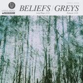 Beliefs / Greys 7