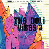 Play & Download Vibes 3 by Deli | Napster