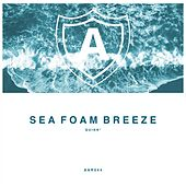 Play & Download Sea Foam Breeze by Quinn | Napster