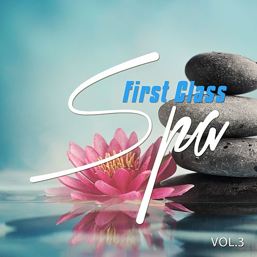 First Class Spa - 2016, Vol. 3 (Finest Chill Out Wellness Moods) by Various Artists