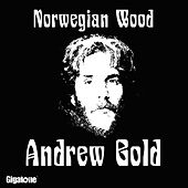 Play & Download Norwegian Wood (This Bird Has Flown) by Andrew Gold | Napster