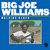 Play & Download Walking Blues by Big Joe Williams | Napster