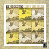 Play & Download Classic Delta Blues by Big Joe Williams | Napster
