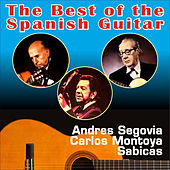 Play & Download The Best of the Spanish Guitar by Various Artists | Napster