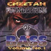 Foundation Of Bass by DJ Magic Mike