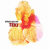 Play & Download Where You Are by Teki | Napster