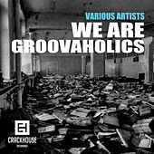 Play & Download We Are Groovaholics - EP by Various Artists | Napster