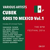 Play & Download Cubek Goes To Mexico, Vol. 1 (The BPM Festival 2016) - EP by Various Artists | Napster