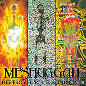 Destroy Erase Improve (RELOADED) by Meshuggah