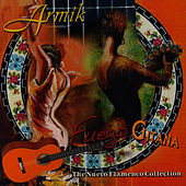 Play & Download Fuego Gitana, The Nuevo Flamenco Collection by Armik | Napster