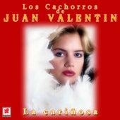 La Cariñosa by Los Cachorros de Juan Villarreal