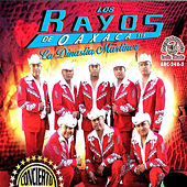 Play & Download Concierto Aniversario En Vivo by Los Rayos De Oaxaca | Napster