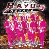 Play & Download Para Mi Region by Los Rayos De Oaxaca | Napster