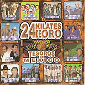 Play & Download Tesoros De Mexico 24 Kilates De Oro by Various Artists | Napster