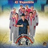 El Tepachito by Alvaro Monterrubio Y Su Santa Cecilia