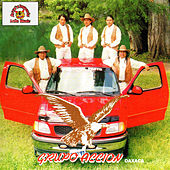 Play & Download Grupo Accion Oaxaca by Grupo Accion Oaxaca | Napster