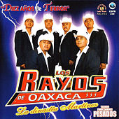 Play & Download Diez Anos De Terror by Los Rayos De Oaxaca | Napster