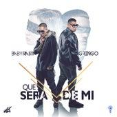 Play & Download Qué Será de Mi by Baby Rasta & Gringo | Napster